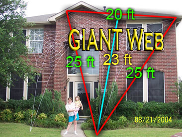 Giant Web Dimensions